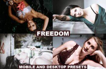 Freedom Desktop & Mobile Presets 4127394 7