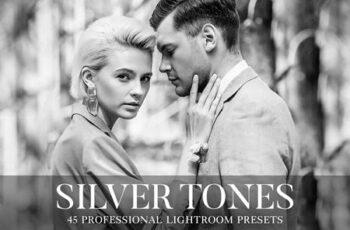 Silver Tones Presets Lightroom 4802232 7