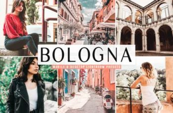 Bologna Lightroom Presets Pack 4160109 3