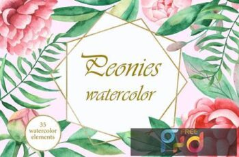 Watercolor Peonies flowers ENBGPFY