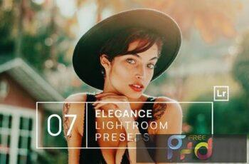 7 Elegance Lightroom Presets 47EFUN5 3