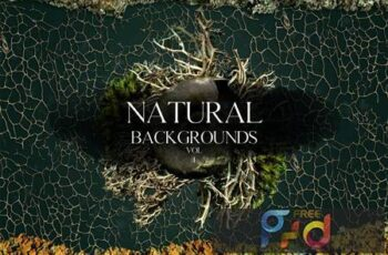 Natural Backgrounds Vol1 7AB9JVU 8