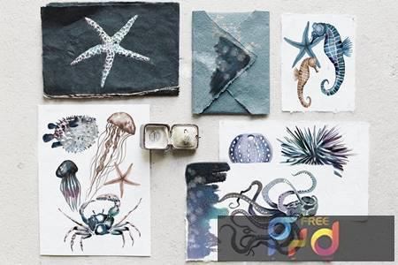 Watercolor ocean creatures set NR6KCQU 1