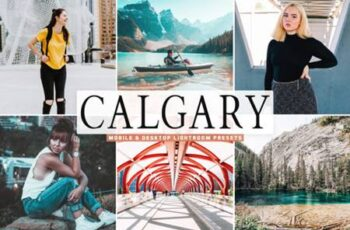 Calgary Pro Lightroom Presets Pack 4220811 4