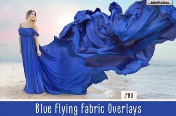 Blue Flying Fabric Overlays 5013308 6