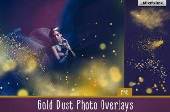 Gold Dust Photo Overlays 5013321 12