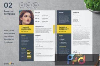 Professional CV Resume Template 02 - Slidewerk TPKSDH6 3