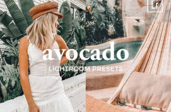 4 Lightroom Presets AVOCADO 4887234 2