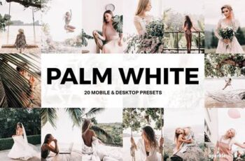20 Palm White Lightroom Presets and LUTs 4986536 6