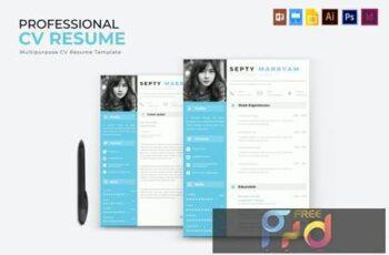Professioal - CV & Resume UZP8J5D 7