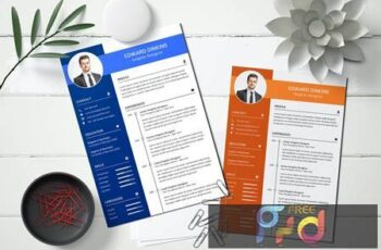 CV Resume HCPBHJS 8