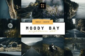 Moody Bay – 4 Pro Lightroom Presets 4870966 7