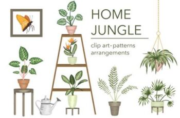 Home Jungle 4327760 3