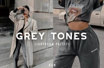 10 GREY TONES LIGHTROOM PRESETS 4863449