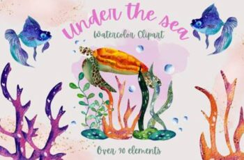 Under the Sea Collection 4365723 9
