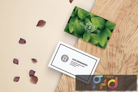 Business Card YJUYXQE 1