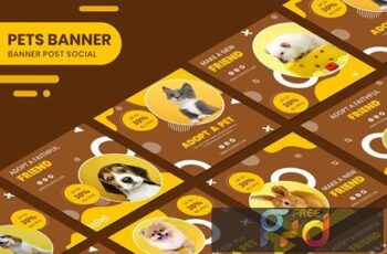 Adopt A Pet Instagram Post Collection Banner 3TS36ML