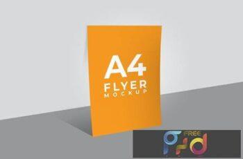 Flyer Mockup - Light File Size CMNA7N3