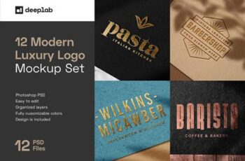 Elegant Luxury Logo Mockup Set 5144614 2