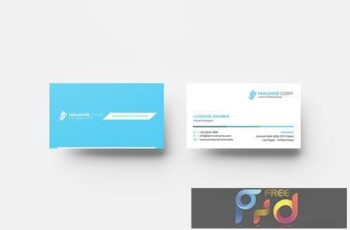Business Card SJT2CF5 6