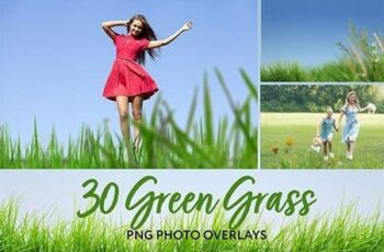 30 Green Grass Photo Overlays 26414686 6
