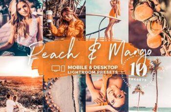 10 Peach & Mango Mobile Presets 5143137 3