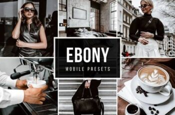 Mobile lightroom Presets EBONY 5025514 4