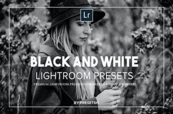 Black & White Lightroom Presets 27483987 5
