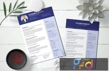 Curriculum Vitae Resume Template ZFRTZDS 2