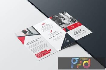 Trifold Brochure 020 TFE5ZK8 6