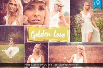 Golden Love Lightrom CC Presets 4725375 5