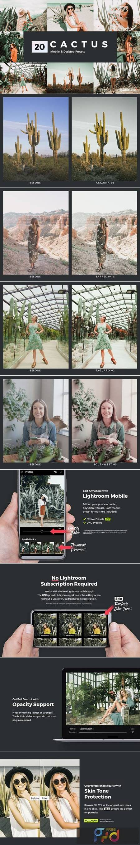 20 Cactus Lightroom Presets and LUTs 5206569 1