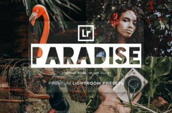 Paradise - Lightroom Presets 5215514 3