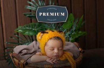 Master Newborn Lightroom Desktop & Mobile Presets 27665516 6
