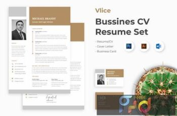 Professional Business CV Resume Set - Vlice L2TW4PZ 5