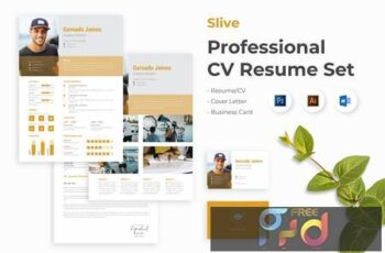 Professional Creative CV Resume Set - Slive RGLAKHZ 6