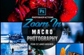 Zoom In - Macro Photography Photoshop Actions 26647825 6
