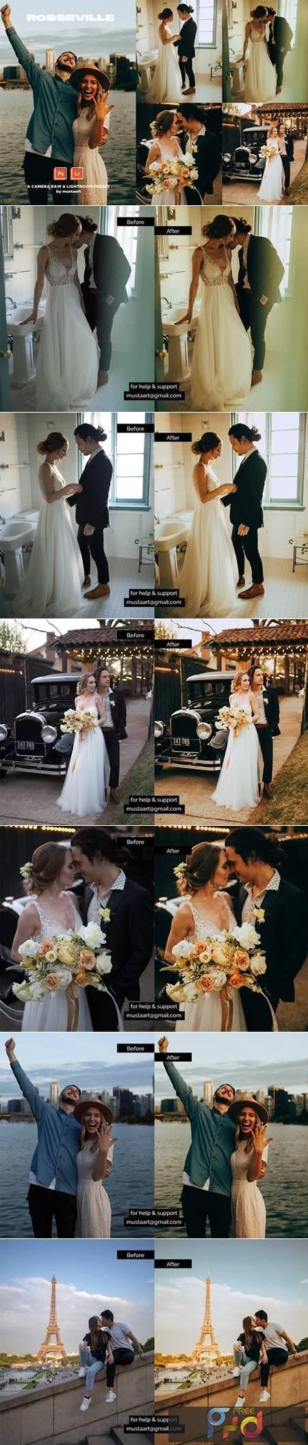 Rosseville - Natural Light Wedding 4987744 1