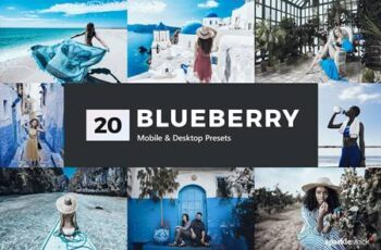 20 Blueberry Lightroom Presets & LUTs 5300385 3