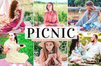 Picnic Mobile & Desktop Lightroom Presets 5299787 2