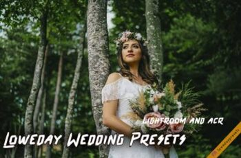 Loweday Wedding Presets - LR and ACR 4775119 7