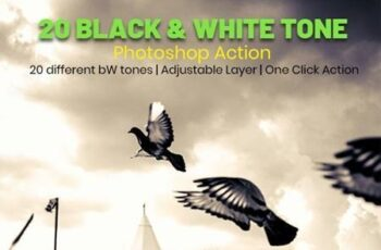 20 Black & White Tone Photoshop Action 26960979 1