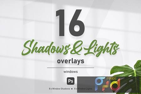 Windows Shadow Overlays 954YYHA 1