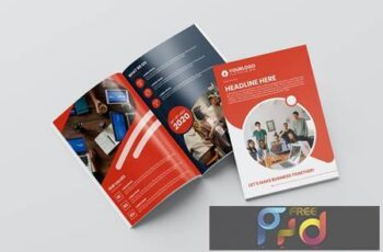 Company Brochure A5Q7UED 7