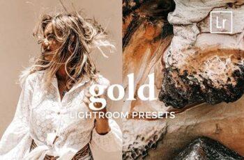 4 Lightroom Presets GOLD 5321505 5