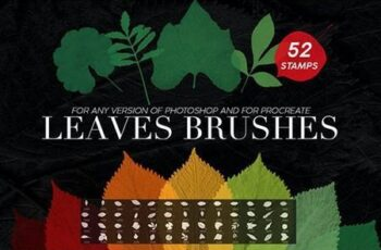 52 Leaves Photoshop Stamp Brushes 27969587 2