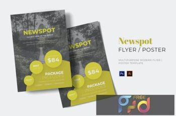 Newspot Flyer LTC8V78 6