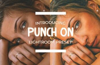 Punch On Lightroom Preset 4896816 3