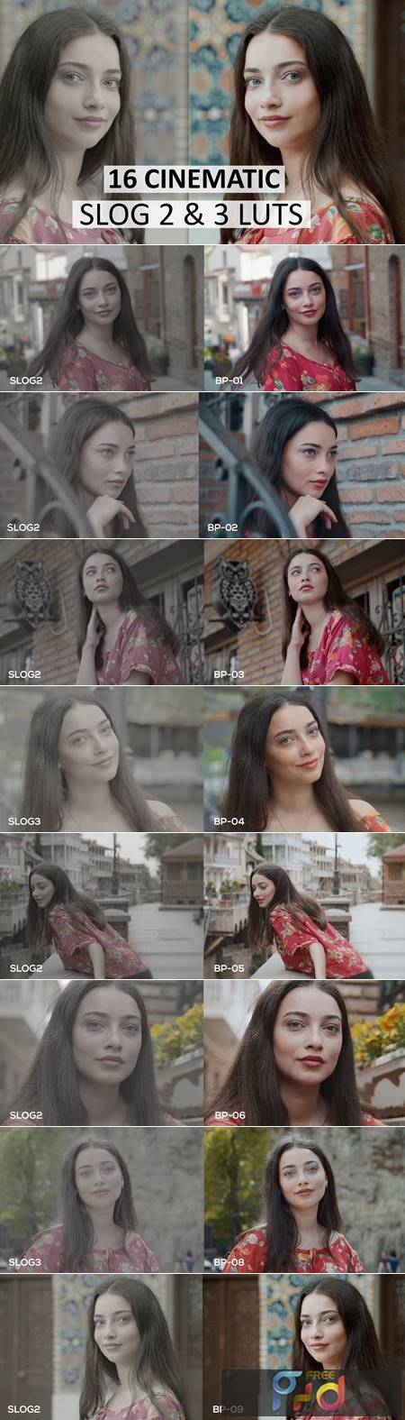Cinematic Luts (Slog2 & Slog3) 4963148 1