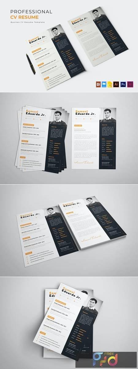 Professional Job - CV & Resume SMFY4HA 1